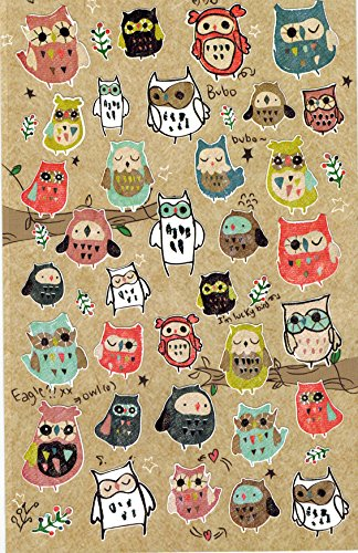 [DECO FAIRY] Colorful Cute Artisy Owls Stickers (42 Stickers)