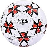 Ecowalker足球 耐磨五号燕尾花加厚PVC足球 室内外训练比赛足球