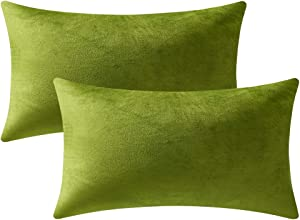 DEZENE Couch Pillow Cases 12x20 Chartreuse: 2 Pack Cozy Soft Velvet Rectangular Throw Pillow Covers for Farmhouse Home Decor