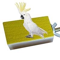 Plataforma de madera para jaula de pájaros, percha para cotorros, periquitos, cacatúas y otros pájaros de tamaño similar