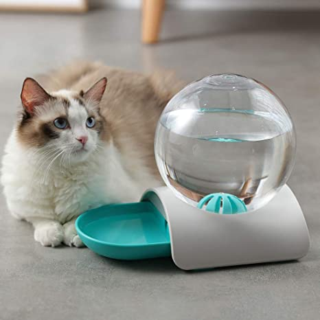 CAOQAO - Dispensador de Comida con Forma de Burbuja para Gatos y ...