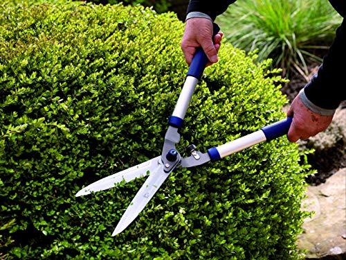 Spear-Jackson-Razorsharp-Hedge-Shears-Blue