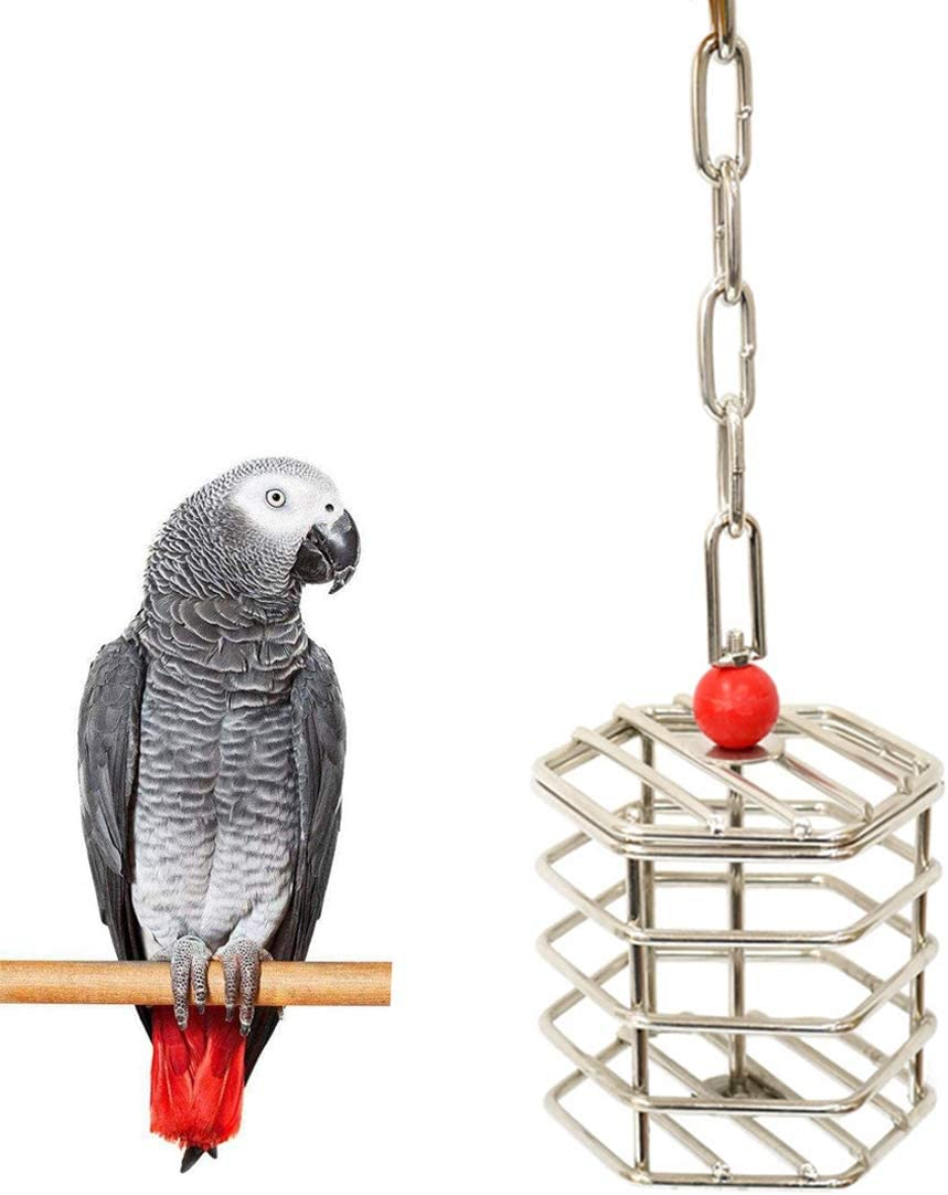 Wontee Bird Stainless Steel Foraging Feeder Parrot Hanging Feeding Box for Macaw African Grey Cockatoo Cockatiel Amazon Cage