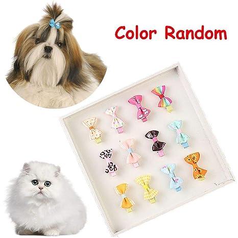 Amazon.com: Genenic 30 piezas Clips de pelo de perro pequeño ...