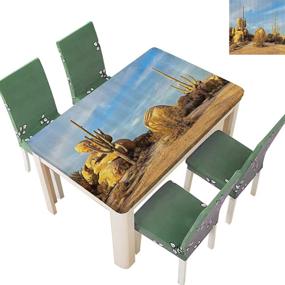 Printsonne Polyester Tablecloths Saguaros and Boulders Catching Last Light Desert Landscape for Indoor and Outdoor Use 54 x 120 Inch