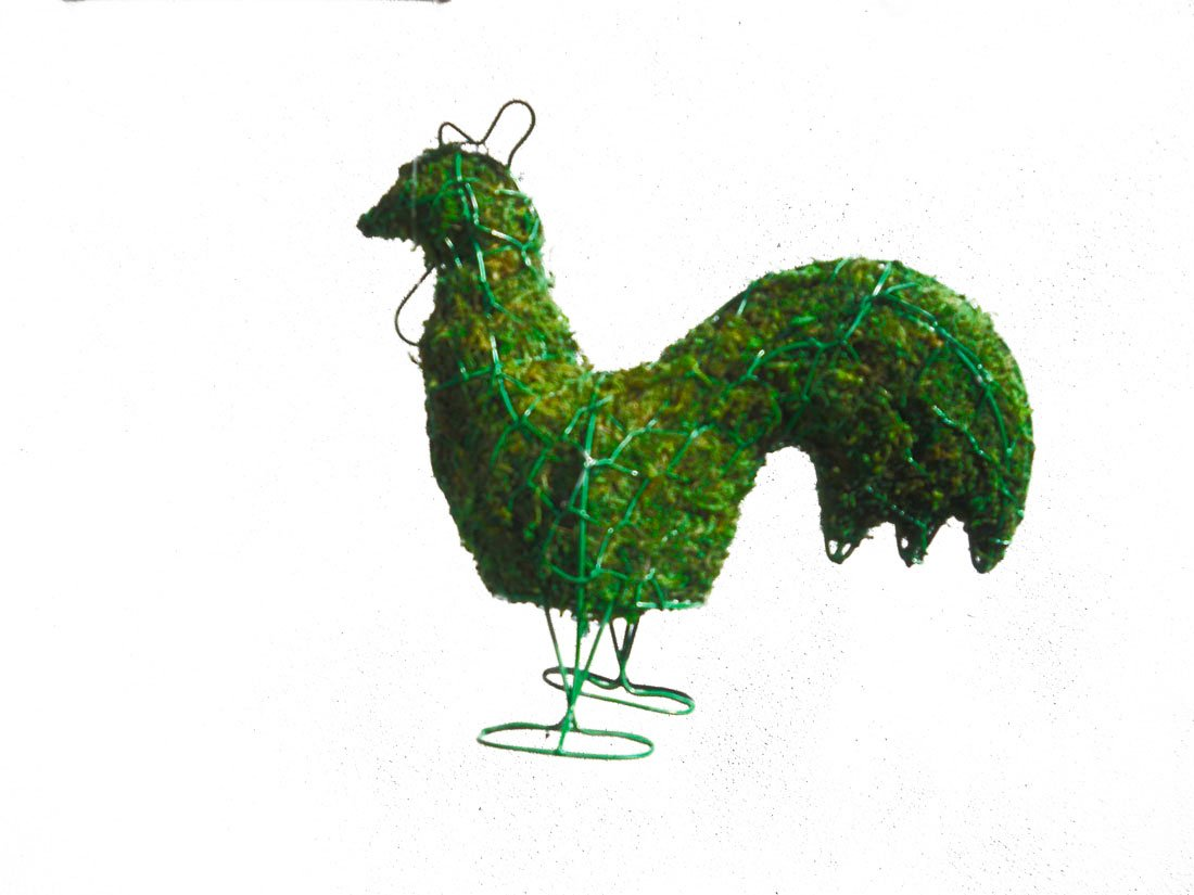 Rooster 15 inches high x 13 inches wide x 6 inches diameter w/ Moss Topiary Frame , Handmade Animal Decoration