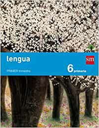 Lengua. 6 Primaria. Savia - 9788467575668
