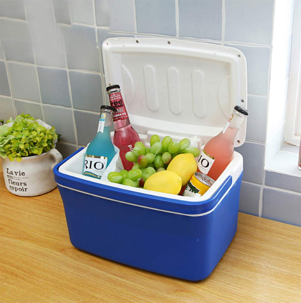 F&W Car Wireless 8L Incubator Heating And Cooling Box Car Home Mini Refrigerating Box Without Electricity And Ice Cube
