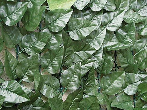 Tenax 1a090214Divy Laurus Hecke PU grün