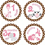 Little LillyBug Designs - Month to Month Baby Stickers - Zoo Animals