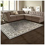Superior Elegant Lille Collection Area Rug, 8mm Pile Height with Jute Backing, Beautiful Chic Bordered Rug Design, Anti-Static, Water-Repellent Rugs - Cream, 8' x 10' Rug