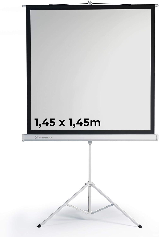 Phoenix Technologies - Pantalla de Proyección con Trípode Portátil Manual Formato 1:1 Altura Ajustable (1,45x1,45m): Amazon.es: Electrónica