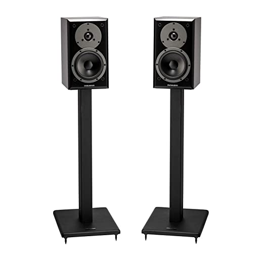 Amazon.com: Pangea Audio DS100 - Soporte para altavoz (acero ...