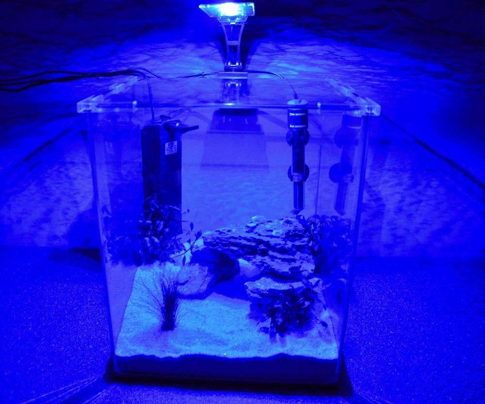 Wave caja Cubo 30 Nano Acuario Completo Acuario Mini acuario + Filtro equipo: Amazon.es: Productos para mascotas