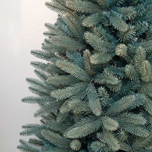 d40c6fb887f4 6ft Blue/Green Louise Fir Luxury Premium PE Christmas Tree: Amazon.co.uk:  Kitchen & Home