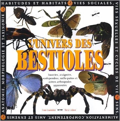 Téléchargement de manuels scolaires en ligne Petites Bestioles by Sheryl Lechner PDF 3829036884