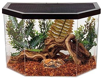 KollerCraft Repitat Flat-Backed Reptile Habitat, 5-Gallon