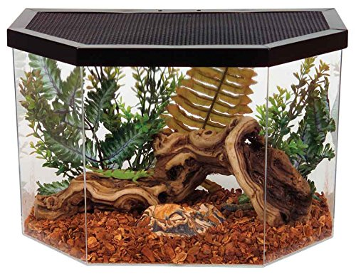 KollerCraft Repitat Flat-Backed Reptile Habitat, - Reptile Aquarium