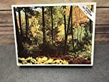 Vintage Whitman 1970's ''Peaceful Forest'' 750 Piece Whitman Jigsaw Puzzle, No. 4656