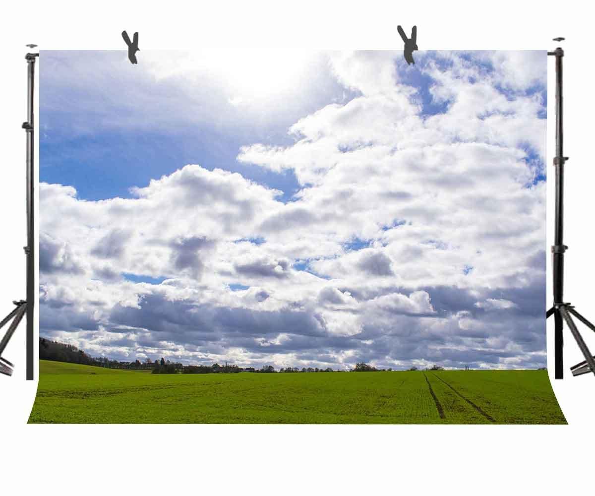 ネイビーブルーとホワイトの背景幕 ナチュラルグリーンの草の眺め 写真撮影用背景 パーソナルウェディングパーティー 写真ブーススクリーン背景 YouTube背景用小道具 ST170119 ST 10 X 7フィート (幅300cm x 2)   B07CPMQLT6