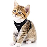 Cat Harness Small Dog Harness Escape Proof Cat Vest Harnesses, Adjustable Soft Mesh Kitty Harness for All Weather Walking, Padded Vest with Metal Leash Clip for Small Pets Puppy Kittens Rabbits, Black