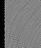 Bridget Riley: Paintings 1963-2015