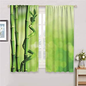 DIMICA Farmhouse Curtain Green Bamboo Stems Nature Ecology Sunbeams Soft Spring Scenic Spa Health Relaxation Print Sliding Soundproof Curtains W63 x L63 Inch Green Light Green