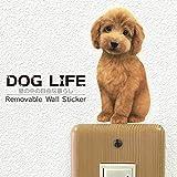 ウォールステッカー DOG LIFE Color 「トイプードル レッド(お座り)」