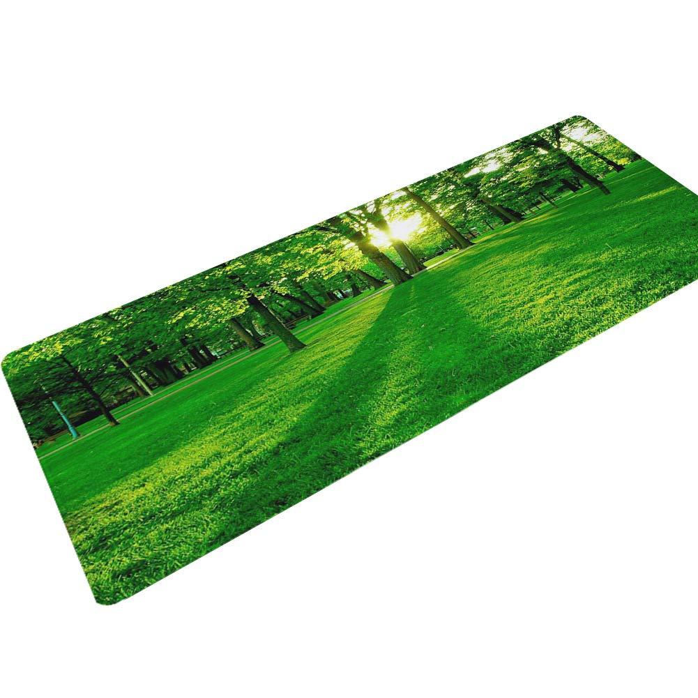 ofreciendo 100% A 40X120cm XY&XH Alfombra Antideslizante Antideslizante Antideslizante Impermeable para alfombras, Puertas, esteras, esteras de Yoga,A,40X120cm  disfruta ahorrando 30-50% de descuento