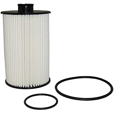 Luber-finer L5086F Heavy Duty Fuel Filter: Automotive
