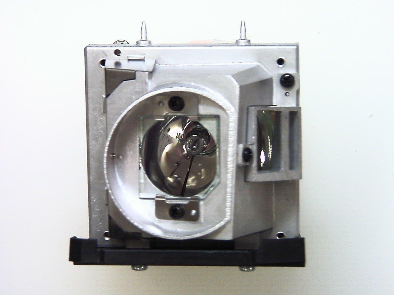 Lámpara del proyector para Optoma EH501/W501/HD36/HD151X: Optoma ...