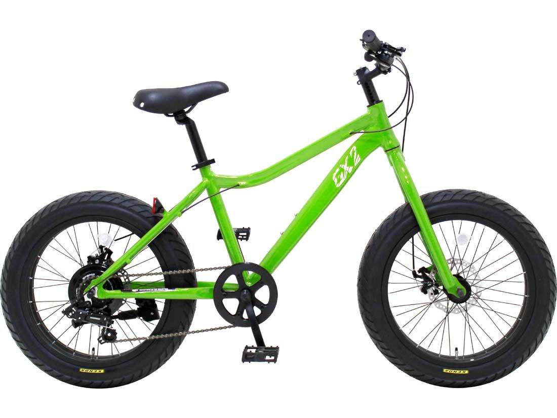 【DAINICHI BLUEPOINT-GX2】湘南鵠沼海岸発信 20インチ ミニベロファットバイク B01JL29JOK グリーン グリーン
