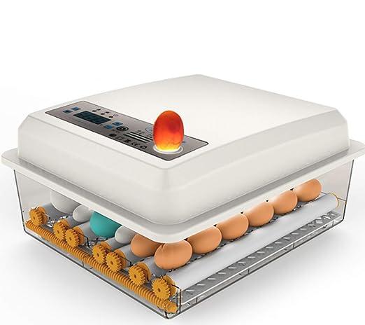 Bluelliant Incubadoras de Huevos automaticas 16 Eggs Incubator Máquina de eclosión Incubadora Incubar Huevos/Pavos/Gansos/Aves/Codornices/Huevos de Gallina