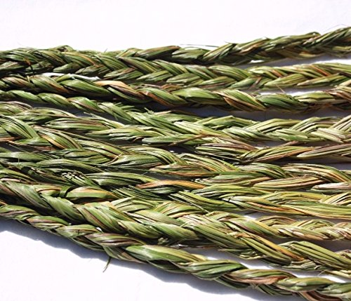 (AURA VARIETY 12 PIECES (BRAIDS) BRAIDED SWEETGRASS FOR SMUDGING WICCA PAGAN SPIRITUAL 20 to 24