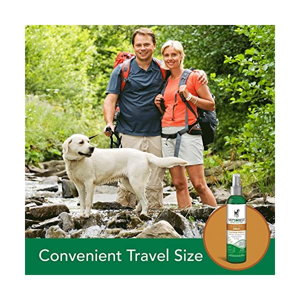 Vet's Best Flea and Tick Home Spray | Flea Treatment for Dogs and Home | Flea Killer with Certified Natural Oils 2