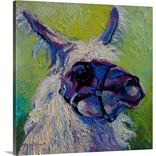 Marion Rose Premium Thick-Wrap Canvas Wall Art Print entitled Lillocet Llama 36
