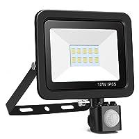Deals on Minger 10W PIR Motion Sensor LED Flood Lights