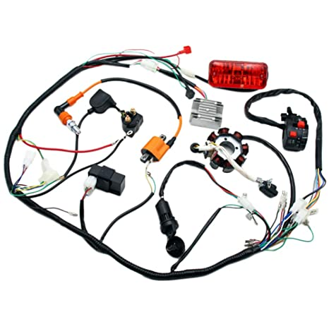 Outstanding Amazon Com Complete Electrics 4 Stroke Atv Quad 150 200 250 300Cc Wiring Cloud Staixuggs Outletorg