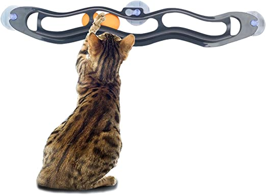 Amakunft - Soporte interactivo para gatos y juguetes de bola para ventanas, diseño de gatos Super Roller Circuit juguete para gatitos, gatitos y mascotas: Amazon.es: Productos para mascotas