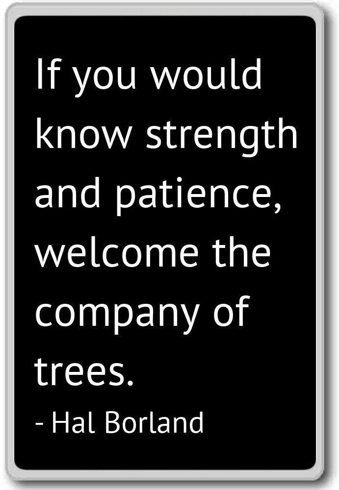 Amazon If You Would Know Strength And Patience Welcom Hal