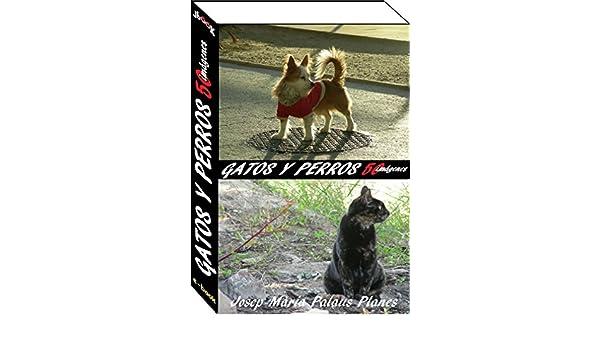 gatos y perros (50 imágenes) (Spanish Edition) - Kindle ...