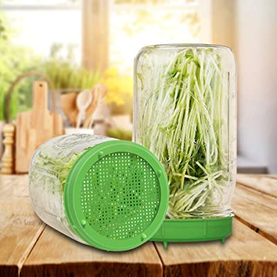 Seed Sprouter Set Includes 2pcs Wide Mouth Mason Jar,2pcs Stainless Steel Mesh Lid,2pcs Plastic Drip Tray and Cleaning Brush for Growing Broccoli,Alfalfa,and Bean Sprouts Sprout Growing Kit