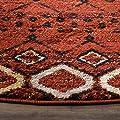Safavieh Amsterdam Collection AMS108D Southwestern Bohemian Terracotta and Multi Area Rug