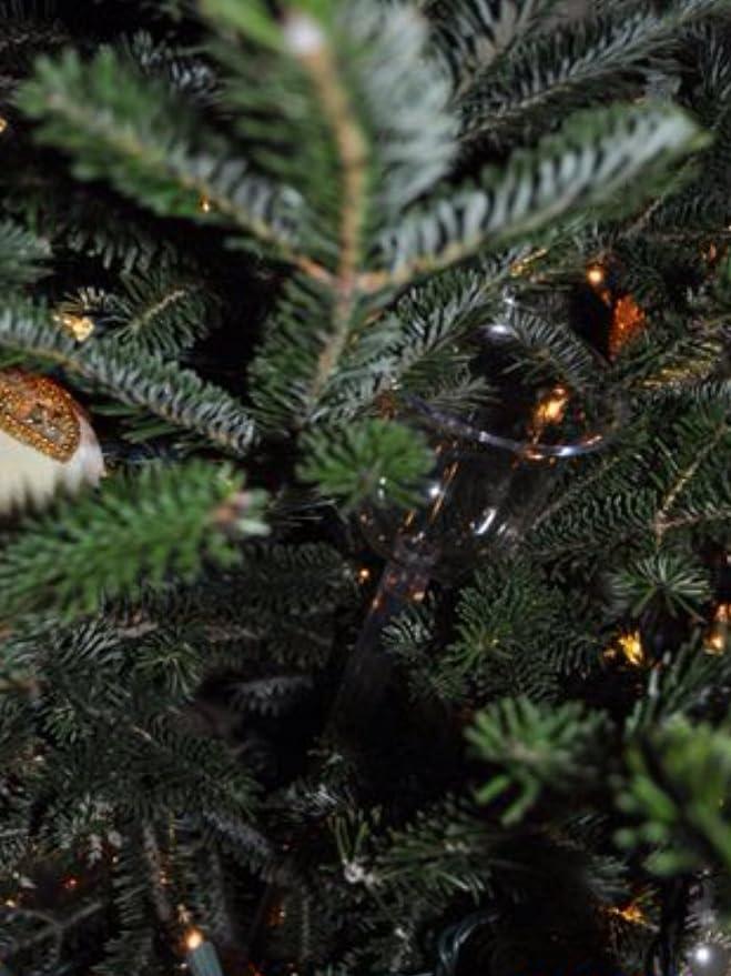 Nivel #1 gifts for christmas