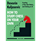 How to Study Chess on Your Own: Creating a Plan that Works… and Sticking to it! (English Edition)