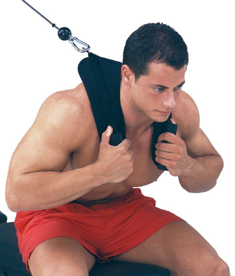HemeraPhit Back Crunch Straps Abdominal Shoulder Belt Home Gym Ab Exercise Strap by HemeraPhit