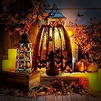 AerWo Black Spider Cubierta de la cortina de la lámpara del cordón de Halloween para las decoraciones de la lámpara de Halloween, 18 x 60 pulgadas