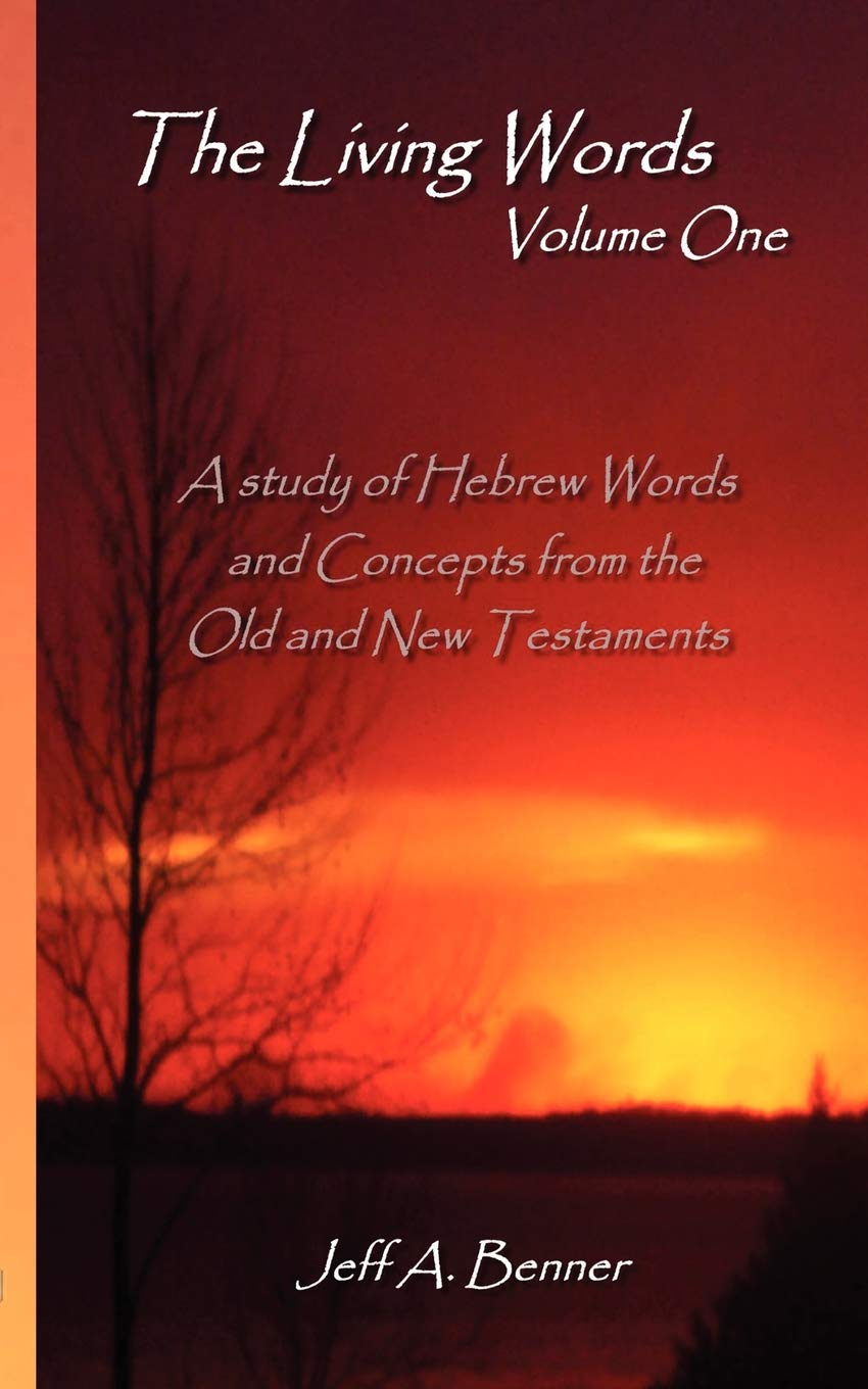 The Living Words-Volume 1 (English and Hebrew Edition) (Hebrew) Paperback –  January 8, 2008