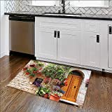 Durable Rug Tuscan Begonia Blooming in Bo x and Wooden on Brick Wall in Italy Red Ivory E x tra Absorbent W30'' x H18''
