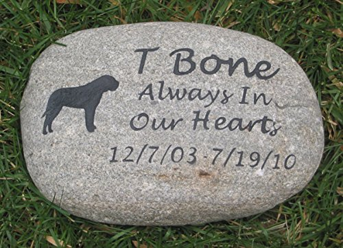 Pet memorial, pet stone memorial, dog stone, cat stone, rainbow bridge, pet loss, pet sympathy, memorial gifts, loss of pet, pet sympathy gift, pet remembrance 10-11 Inch by Mainline Engraving